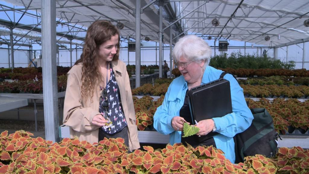 University of Florida alum Judy Plaut, 69, and current student Gabby Nease, 20, examine plants in one of the greenhouses on the Gainesville, Florida, campus. Video still by Steve Mort/PBS NewsHour