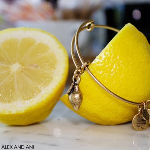 Alex's Lemonade3