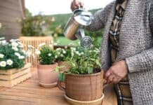 4 Backyard Hobbies That Are Perfect To Try This Spring