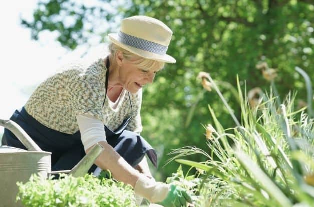 The Benefits of Gardening at Home
