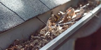 Tips To Prepare Your Home for Autumn Weather